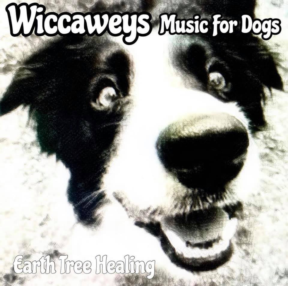 Wiccaweys Music For Dogs